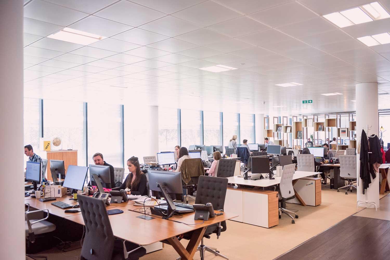 Mehrere Mitarbeiter in einem Büro